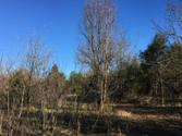 0 Charlies Creek Road Lot NA, Lowndesville, SC 29659 - Image 1