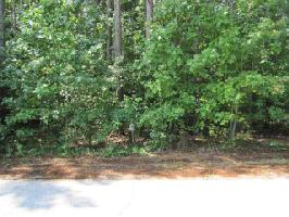 LOT 894 NICKLAUS DRIVE, WESTMINSTER, SC 29693 Property Photos