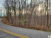 000 Cross Spann Road, Murray, KY 42071 - Image 1: From Cross Spann Road looking at lots