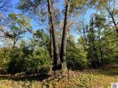 Lot2 Cypress Harbor Rd., New Concord, KY 42076 - Image 1