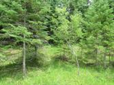 N Shore Drive Lot Lots 105 & 106, Millersburg, MI 49759 - Image 1: Kress - lots main