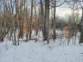 Snowcrest Trail Lot LOT 167, Elmira, MI 49730 - Image 1: Northeast Side of Parcel