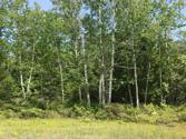 NHN Wilderness Drive Lot Lot 153, Presque Isle, MI 49777 - Image 1: Private wooded lot